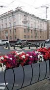 Кирова, контейнерное озеленение 2020 г.