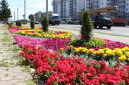 сквер Шевченко по улице Барыкина